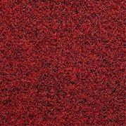 Marine Carpet Rogue