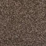Carpet Capers Indoor Mats Colour Autumn